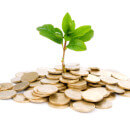 Dividend Money Tree