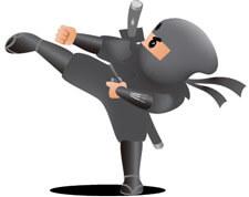 Dividend Ninja Karate