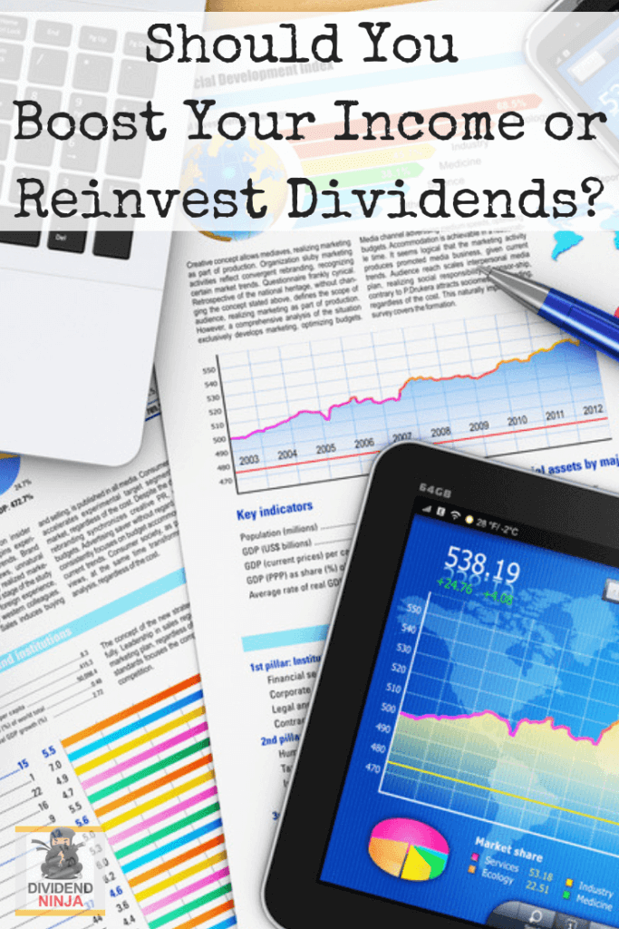 Supplement Your Income or Reinvest Dividends?